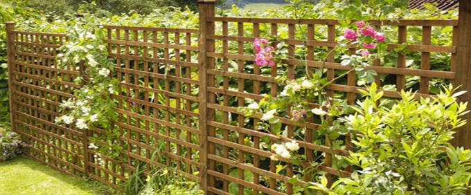 Trellis Panels Nottingham