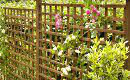 Wood Fencing Nottingham | Wood Fences Nottingham